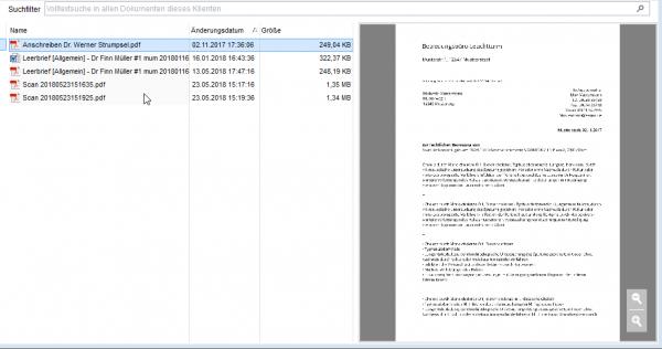 Vorschau für PDF und Bilder||Jetzt mit Vergrößerungs- und Positionierungsmöglichkeit